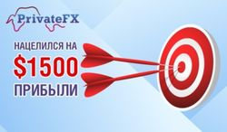 Инвестпортфель «PrivateFX №1»