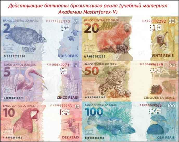 Банкноты бразильского реала
