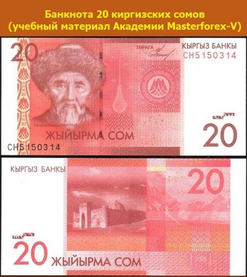 Банкнота в 20 киргизских сомов