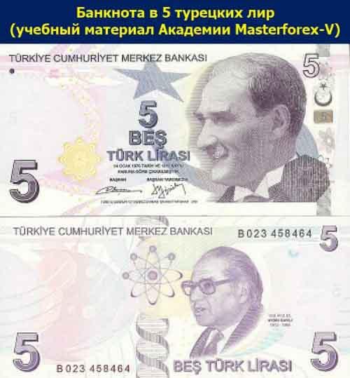 Банкнота в 5 турецких лир