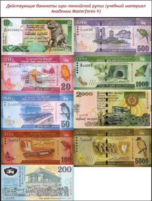Банкноты шри-ланкийского рупии