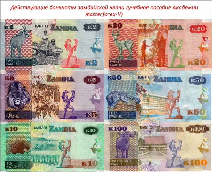 Банкноты замбийской квачи