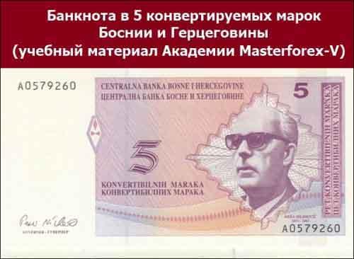 Банкнота в 5 конвертируемых марок Боснии и Герцеговины