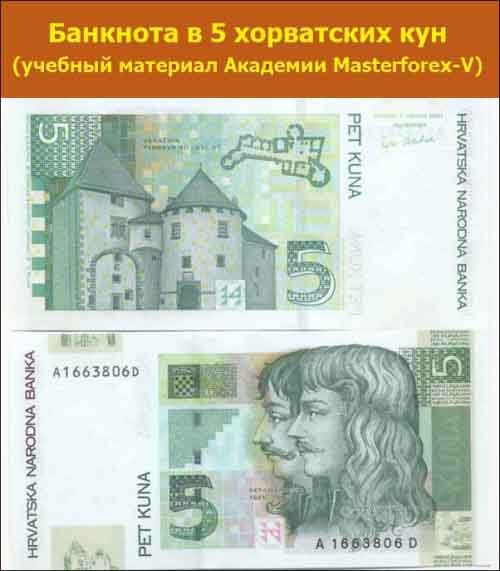 Банкнота в 5 хорватских кун