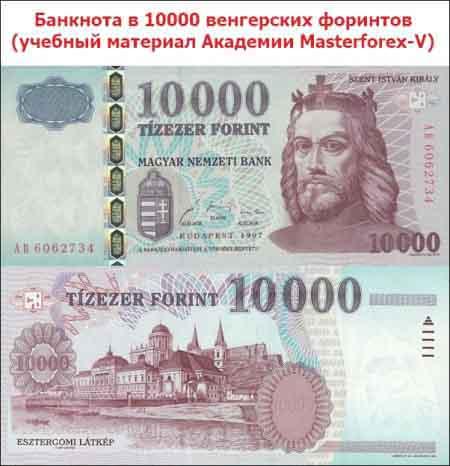 Купюра в 10 000 венгерских форинтов