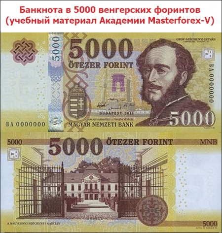 Банкнота 5000 форинтов