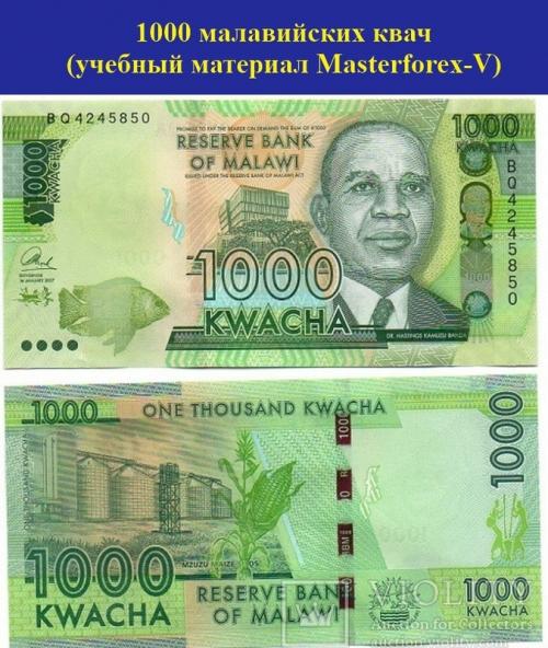 1000 малавийских квач