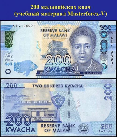 200 малавийских квач