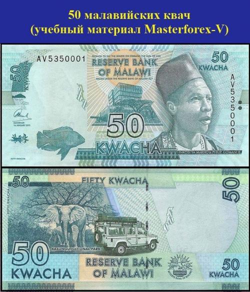 50 малавийских квач