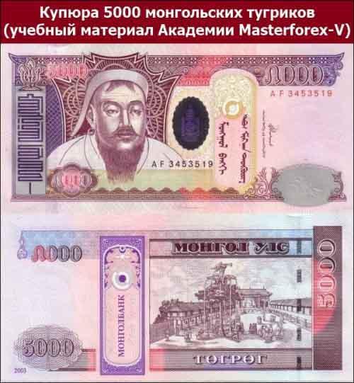 Купюра 5000 монгольских тугриков