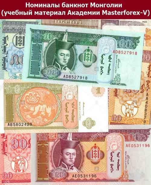 Номиналы банкнот Монголии