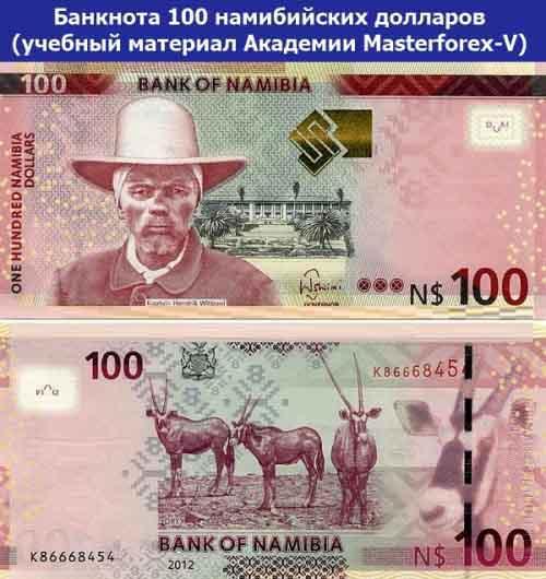 Банкнота 100 намибийских долларов