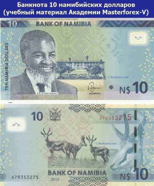 Банкнота 10 намибийских долларов