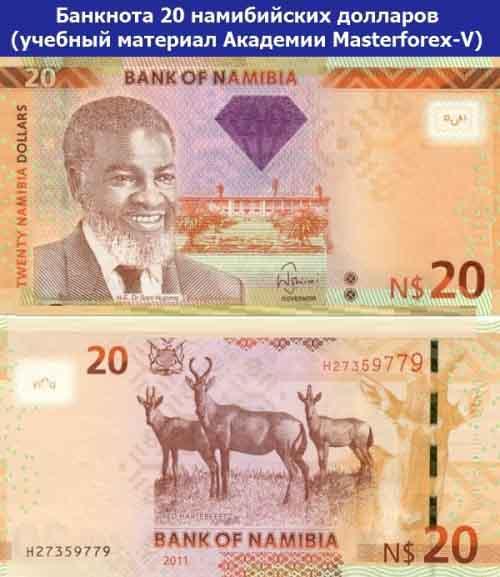 Банкнота 20 намибийских долларов
