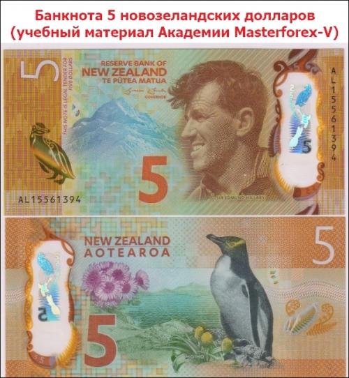 Банкнота в 5 новозеландских долларов
