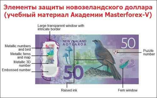 Элементы защиты новозеландского доллара