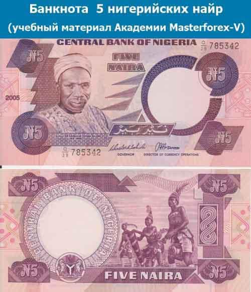 Банкнота 5 нигерийских найр