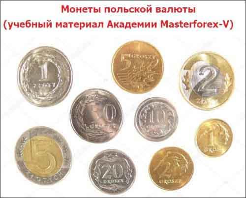 Монеты польской валюты