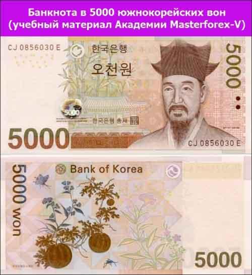 Банкнота 5000 южнокорейских вон