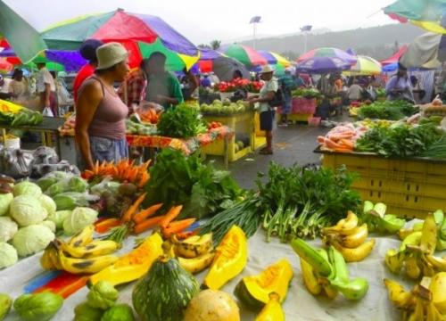 Сельское хозяйство Доминики