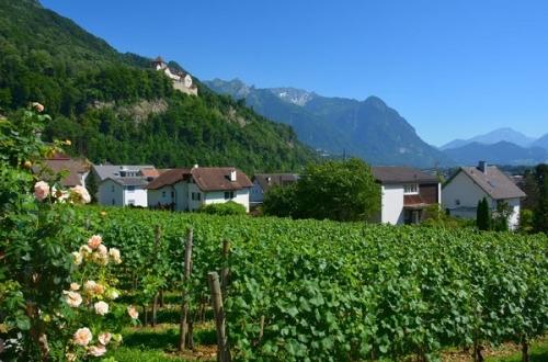 Сельское хозяйство Лихтенштейна