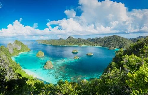 Виды Папуа – Новой Гвинеи