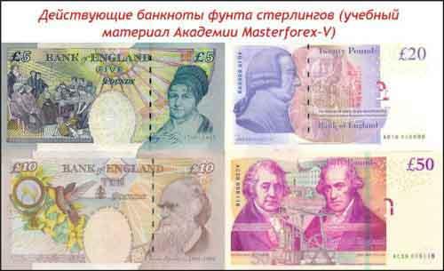 Действующие банкноты фунта стерлингов