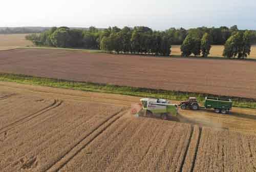 Сбор урожая в Латвии