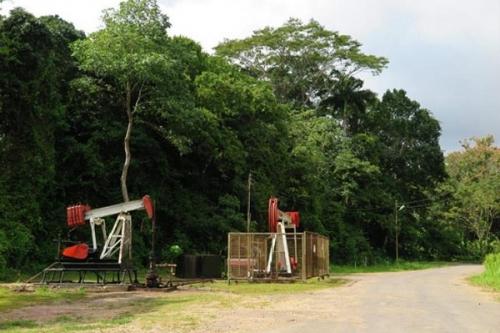 Нефтяная отрасль Тринидада и Тобаго