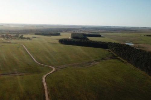 Уругвайская ферма