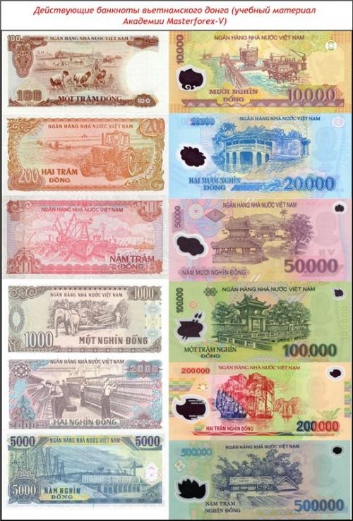 Действующие банкноты вьетнамского донга